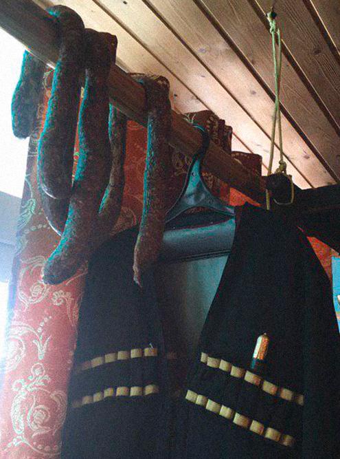 В семейных музеях хранят всё: керамику, костюмы, колбасу