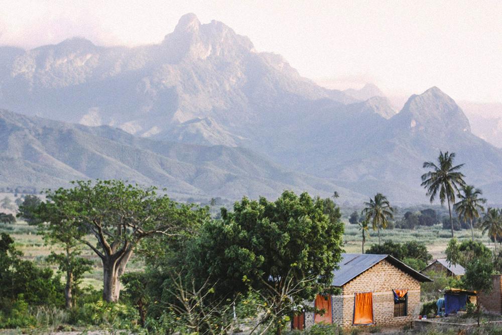 Типичный африканский пейзаж в окне автобуса