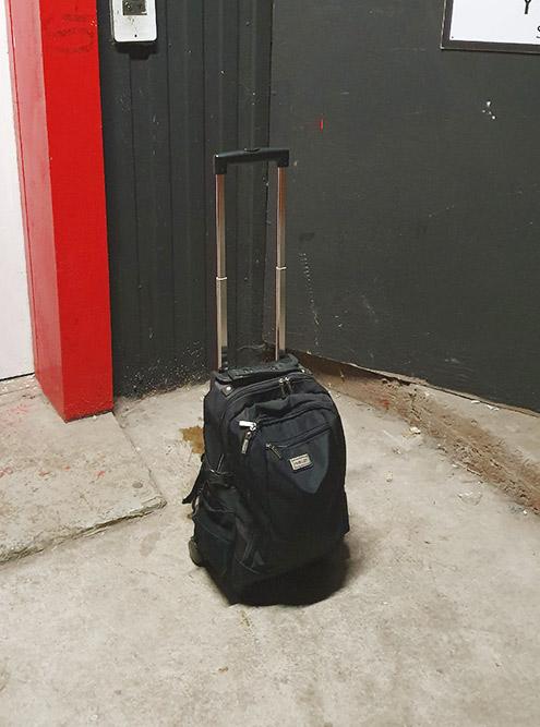 Сумку на колесиках для&nbsp;перевозки косметики мне подарили на день рождения. Она стоит 12 700<span class=ruble>Р</span>. Это не самая дорогая профессиональная сумка: бывают и за 30 000<span class=ruble>Р</span>