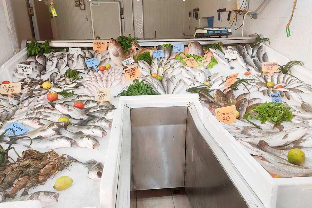 В Турции легко купить свежайшую рыбу, ацены ниже московских