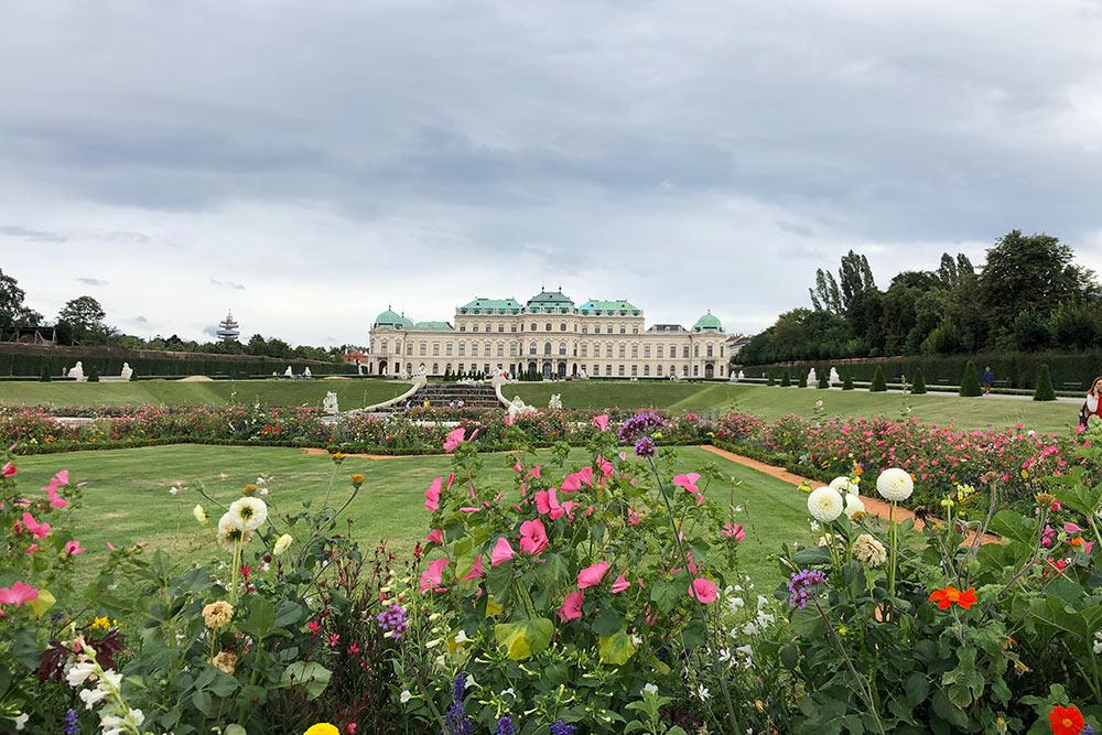 В саду дворца Бельведер растут полевые цветы. Мне такие сады нравятся больше, чемодинаково высаженные розы