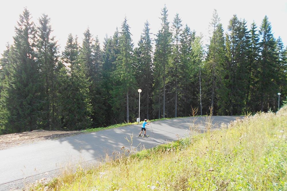 Лыжероллеры — это летние лыжи на роликах, но с такимиже, как у обычных лыж, палками