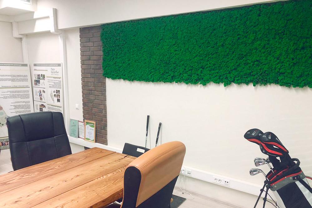 В офисе покрасили стены, а потом украсили их декоративным мхом, фигурками животных и живыми растениями