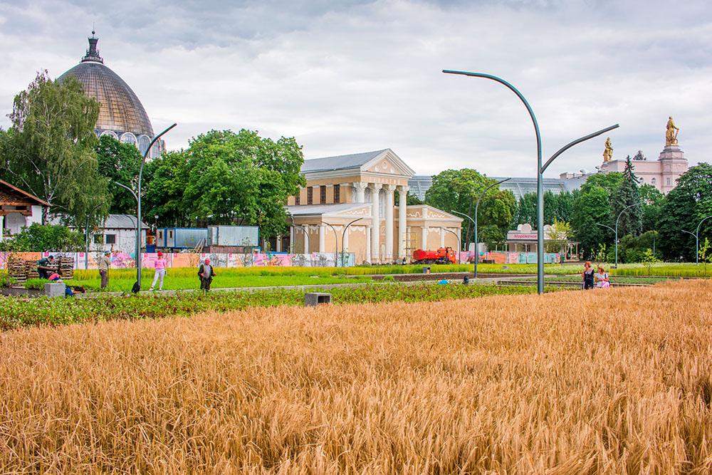 Ландшафтный парк ВДНХ — самый крупный проект компании: площадь парка — 83,7 га, высадили 7300 деревьев икустарников, 32,8 тысячи многолетних и 19 тысяч однолетних цветов, 310 тысяч злаковых иполевых растений, 12,9 тысячи квадратных метров газона