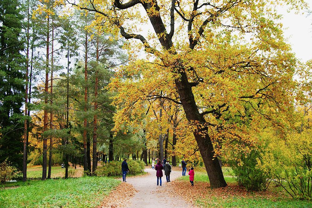 ВЕкатерининском парке всегда малолюдно. Много людей только вдвух местах: увхода водворец ирядом сКамероновой галереей— следующей точкой моего маршрута