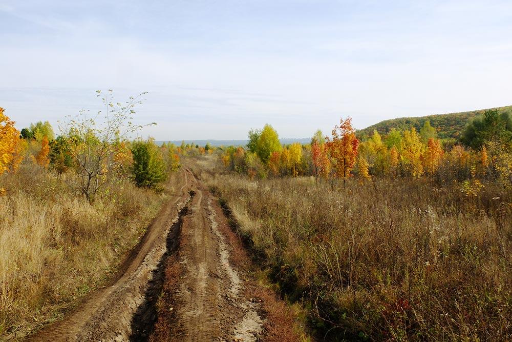 Осенью взеленые краски нацпарка добавляются красные, желтые иоранжевые цвета, ионсмотрится совсем по-другому