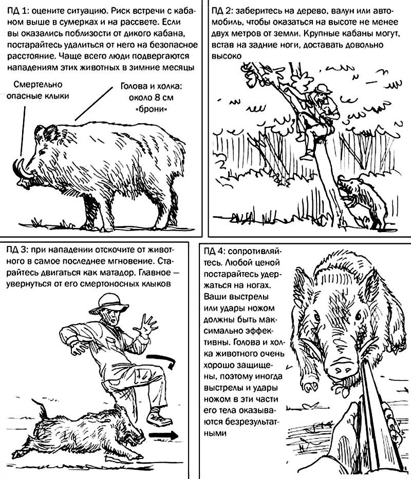 По материалам книги «Выживание в дикой природе и экстремальных ситуациях. 100ключевых навыков по методике спецслужб» Клинта Эмерсона