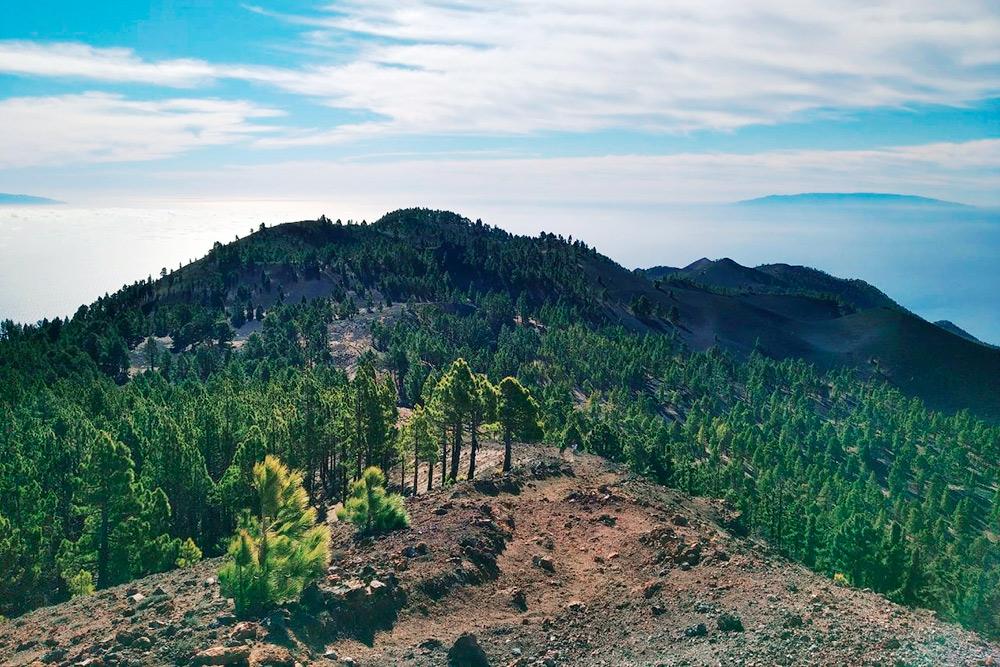 Вовремя прогулок поRuta delos Volcanes открываются прекрасные виды