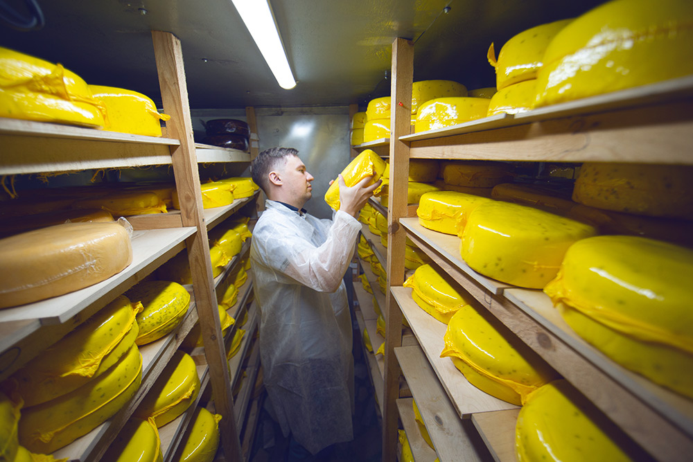 В хранилище сыр вызревает и ждет отправки покупателям. Объема помещения хватает примерно на 10 тонн сыра