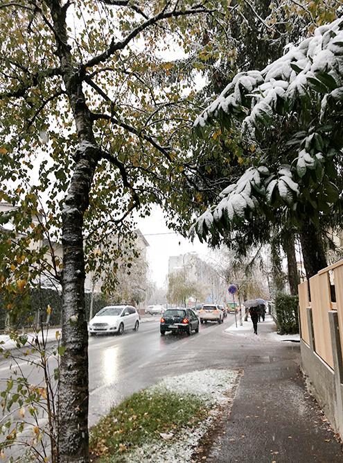 Снег и березы тоже есть. Скучать по березкам не приходится