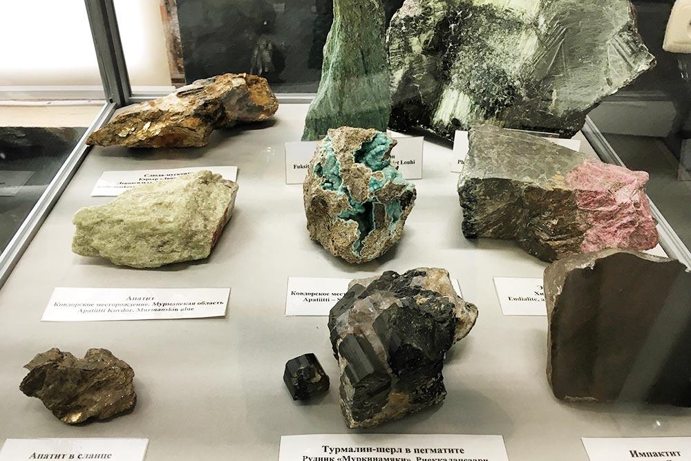 Полезные ископаемые: апатиты, турмалин, кварц. Эти образцы— изКарелии иМурманской области
