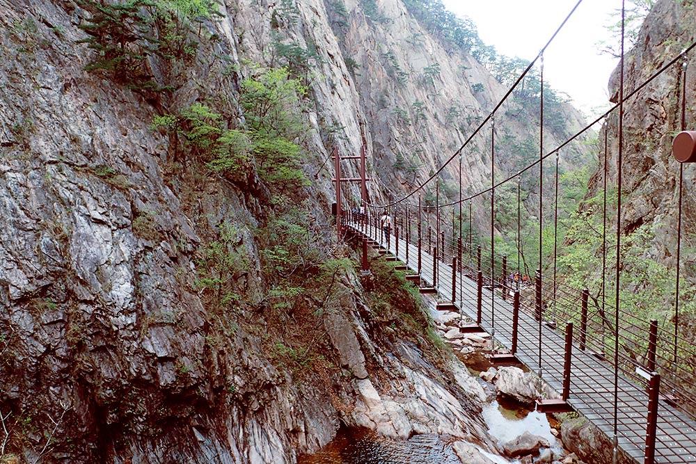 Подвесной мост через ущелье на одном из маршрутов