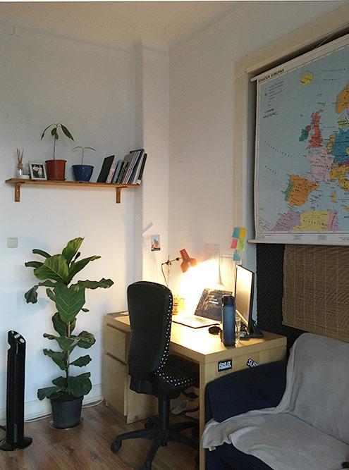 Моя комната за340€. У меня есть кровать, диван, шкаф, рабочий стол, балкон имного цветов