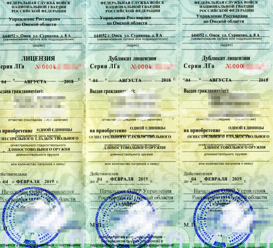 Так выглядит лицензия на приобретение оружия. Источник: «ГоркомNNN»
