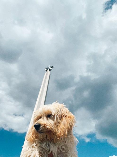 И у обелиска Вечной Славы вУльяновске