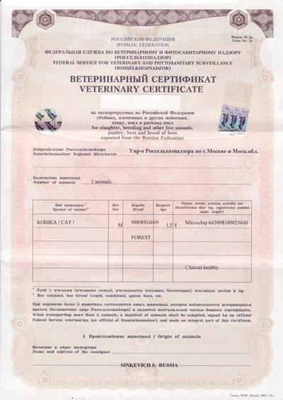 Международный сертификат формы 5А