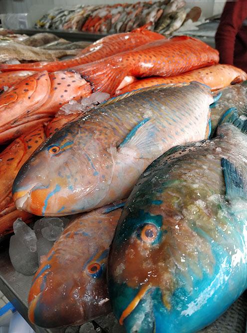 На саудовских рыбных рынках можно найти много разной рыбы, креветок, крабов, кальмаров