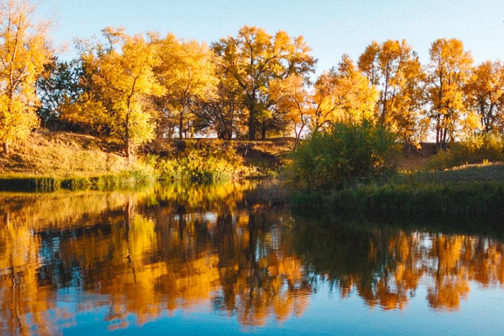 Осень на реке Ахтубе. Фото: Владимир Поволоцкий