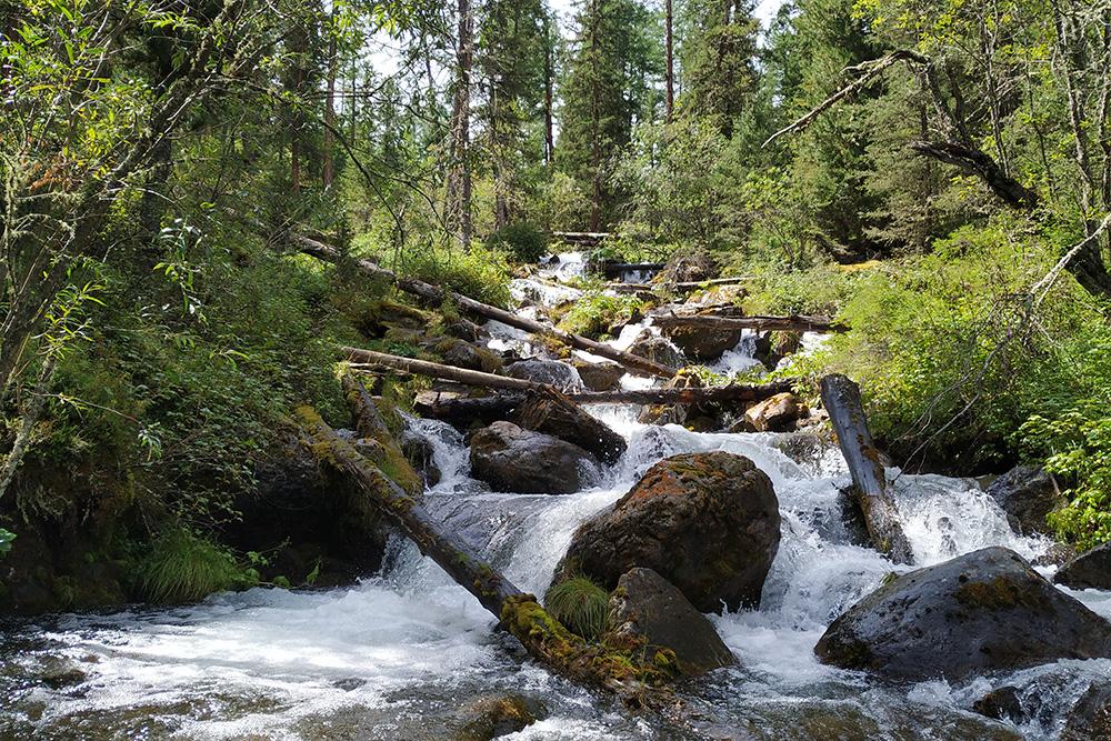 Ручей Орой стекает с горы и образует живописные водопады. Всю воду дляпитья и приготовления еды мы брали из ручьев, рек и озер