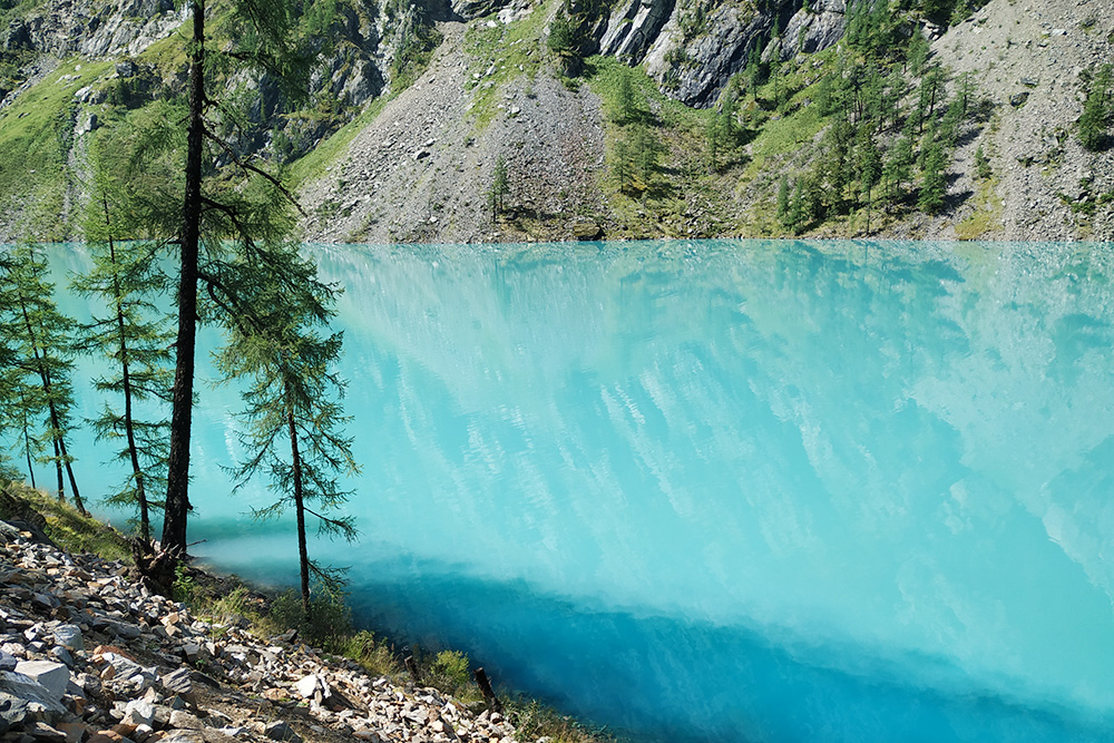В месте, где в Нижнее Шавлинское озеро впадают ручьи, вода ярко-синяя, словно это разлитые чернила