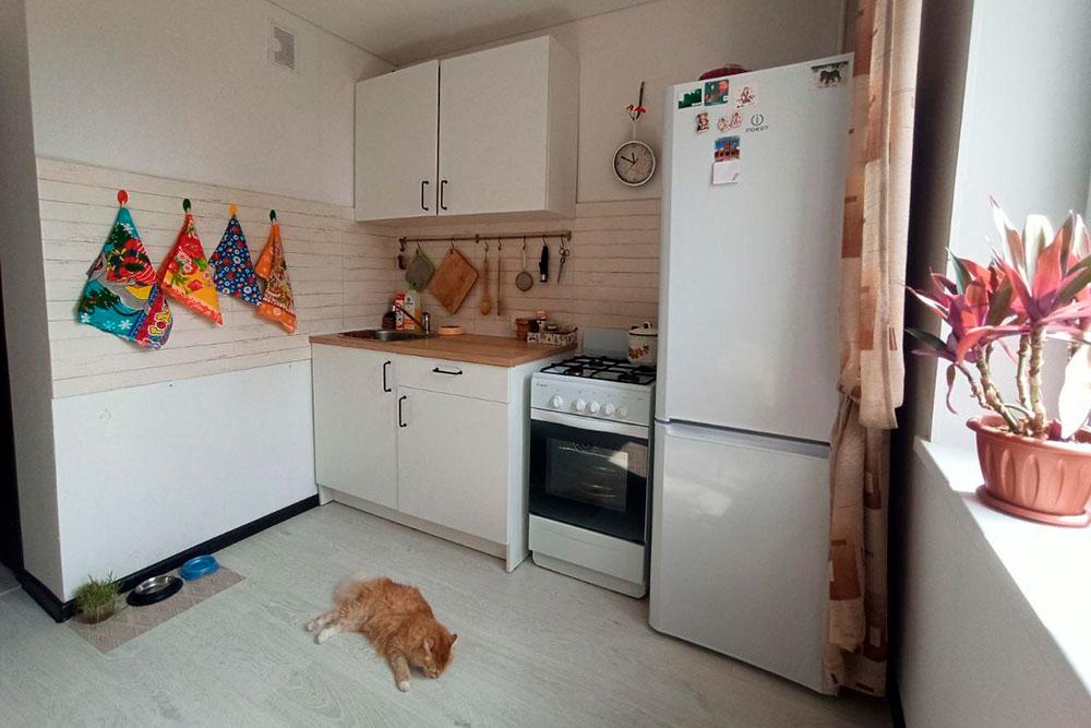 Мы оставили себе только холодильник и плиту
