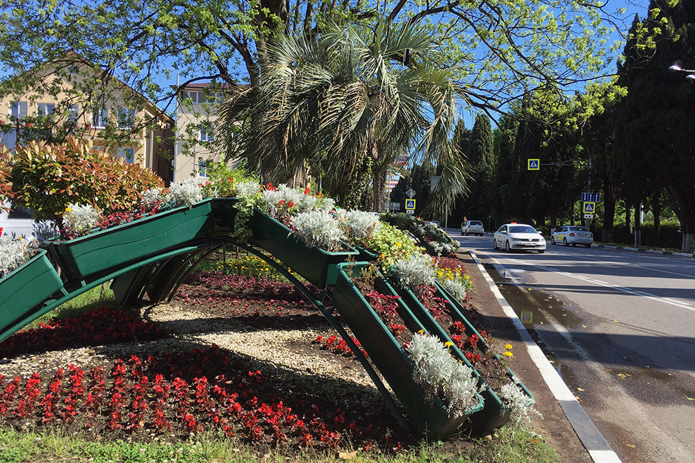 Тазики с цветами напоминают сельские магазины «Сад-огород», где продают рассаду для теплиц