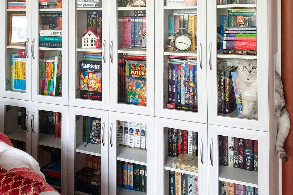 Посмотрите, какой у нее классный кот и книжный шкаф