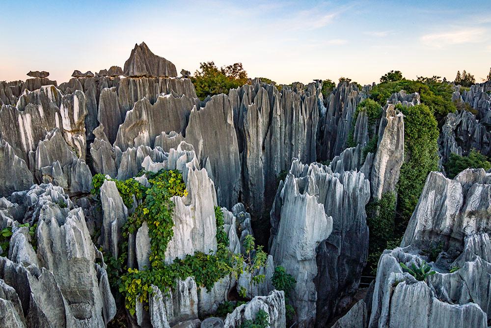 Каменный лес — природный памятник. Фото: Andrii Lutsyk / Shutterstock