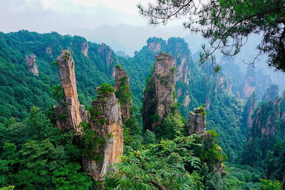 Горы Чжанцзяцзе в провинции Хунань. Вы могли видеть их в фильме «Аватар». Фото: Luca Brianza / Shutterstock