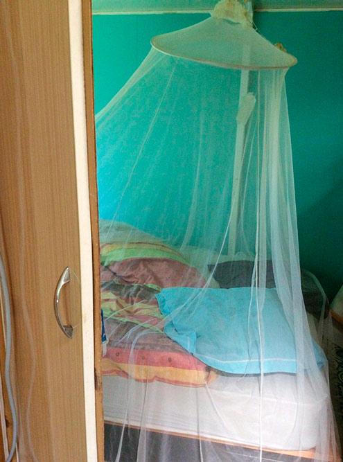 У Ханса и Кэролин мы жили в вагончике, где были две комнатки. На фото — кровать подмоскитной сеткой в спальне. Воды нет, электричество есть, снаружи — компостный туалет за шторкой