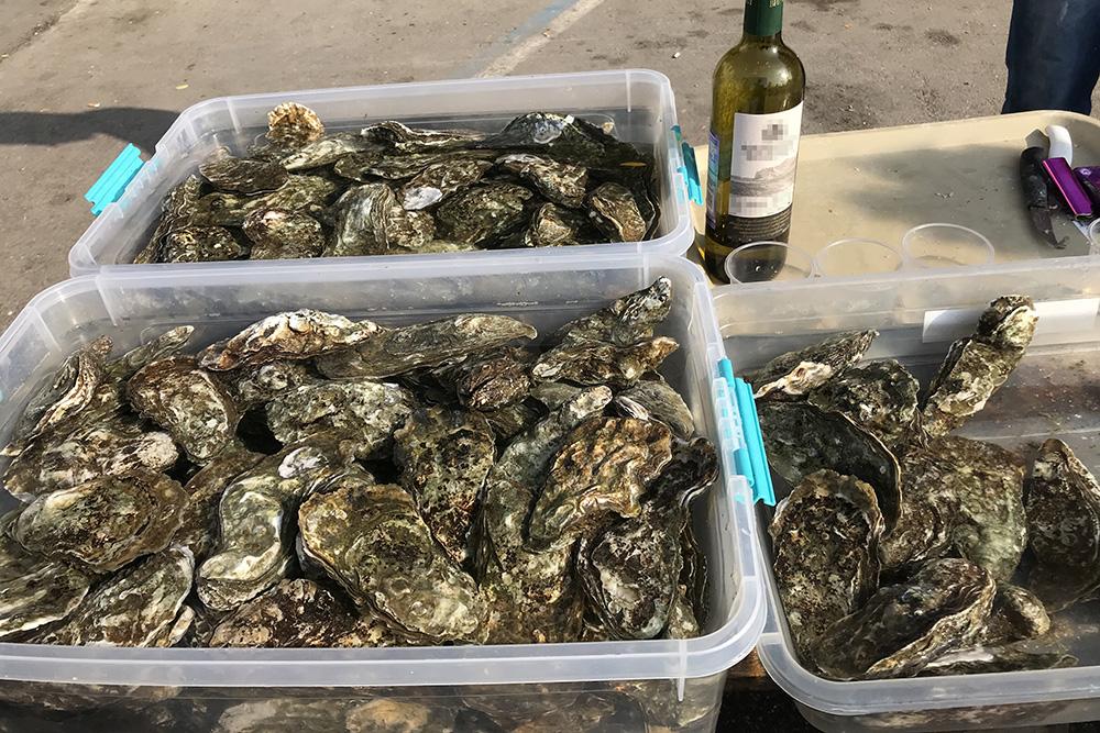 На набережной Балаклавы дают запить устрицу глотком белого вина