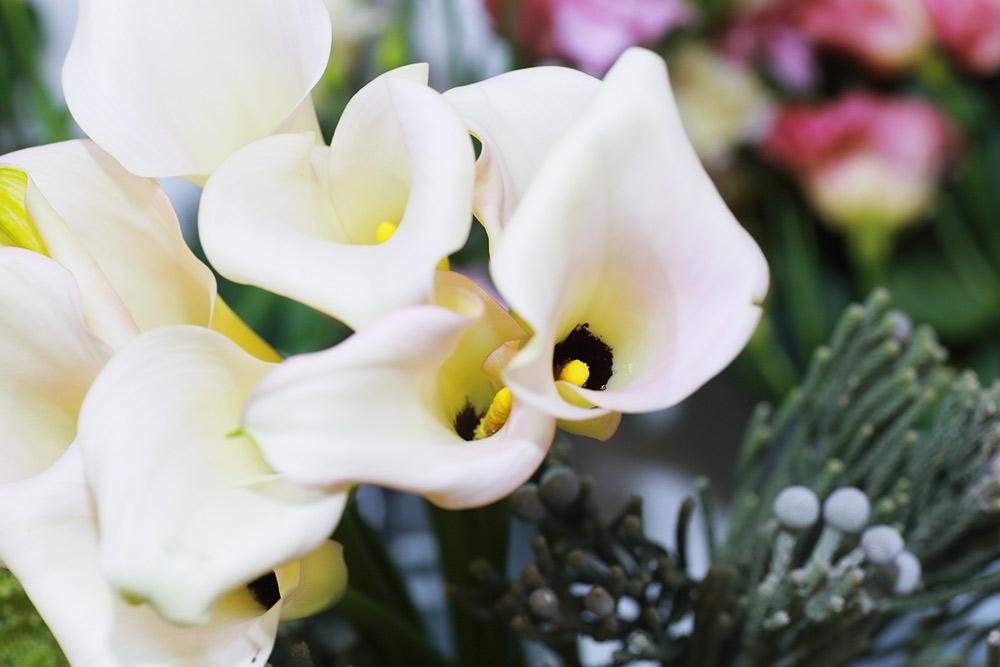 Белые каллы и бруния, которая в диком виде встречается только в Южной Африке. Фото: Ксения Колесникова