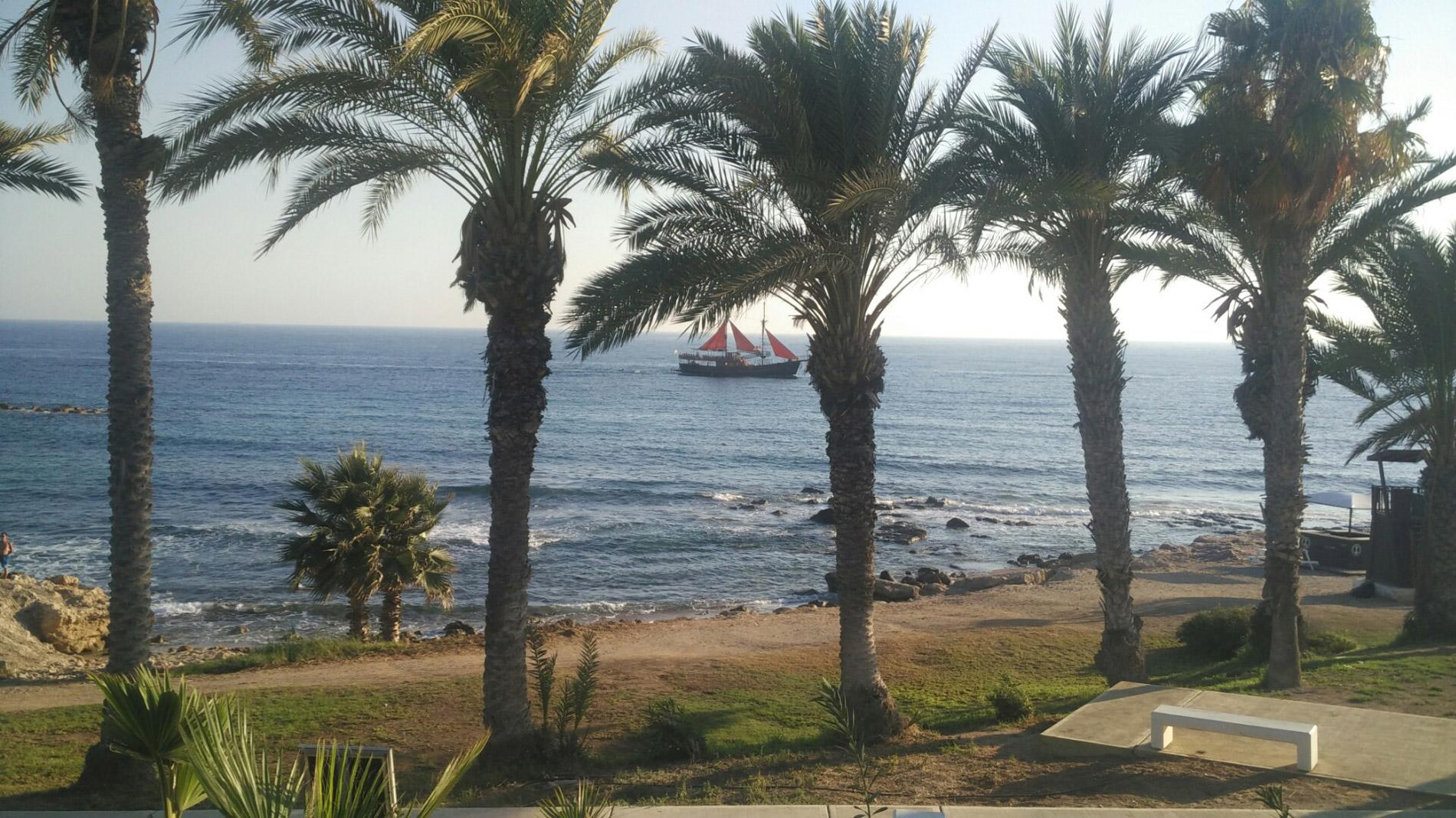 Вместо березок на Кипре финиковые пальмы