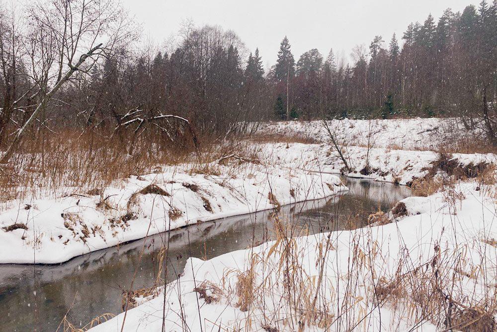Снег, тишина, чистый воздух — очень круто, что мы будем жить тут постоянно всего через пару лет