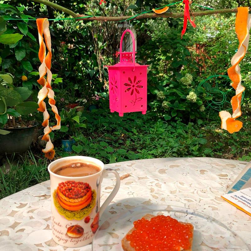 Завтракаю в саду