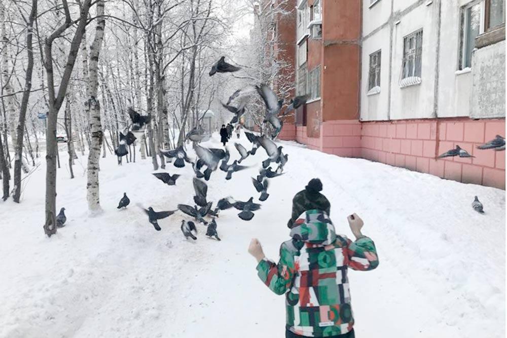 Сын очень любит голубей