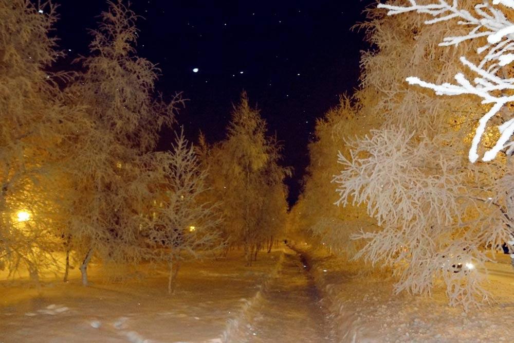 Зимой в Сургуте очень красиво: белый снег и деревья, одетые в иней