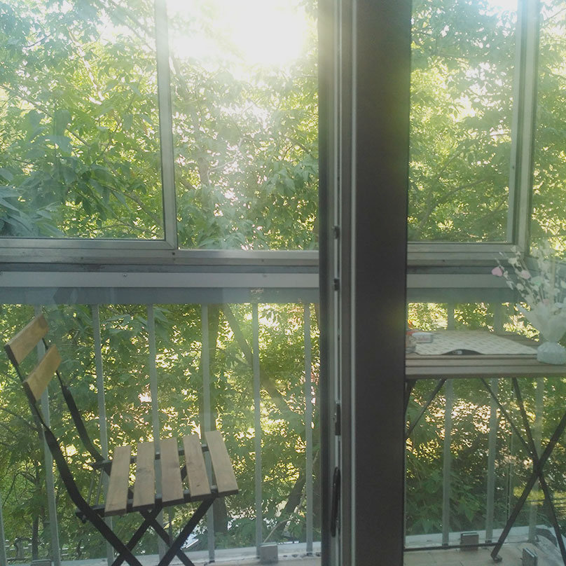 Вид с балкона на московские джунгли