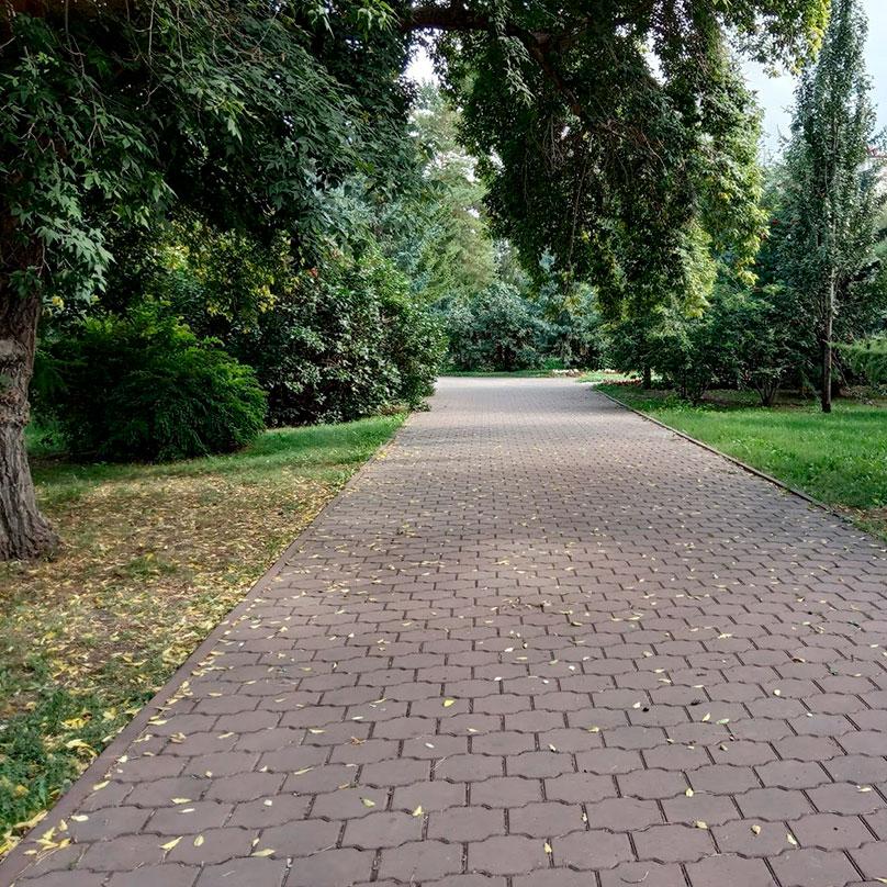 Хотя деревья еще зеленые, осень очевидна