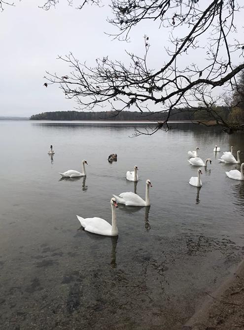 На Виштынецком озере очень красиво
