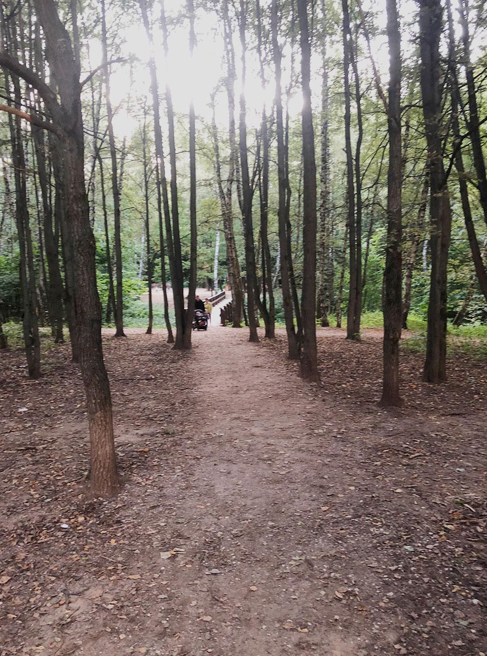 Прогулялась в парке
