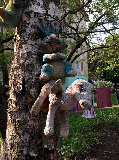 В одном из дворов игрушки привязаны к деревьям. Какой все-таки забавный способ пристроить мягкие игрушки после того, как они отслужили свое