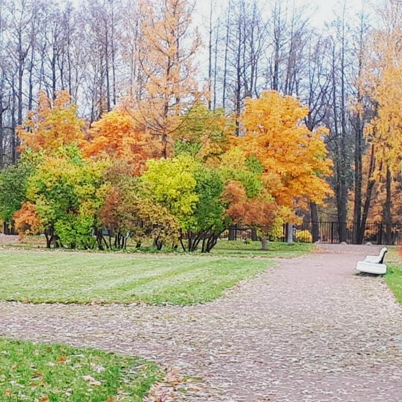 Вид по дороге в Нижний парк