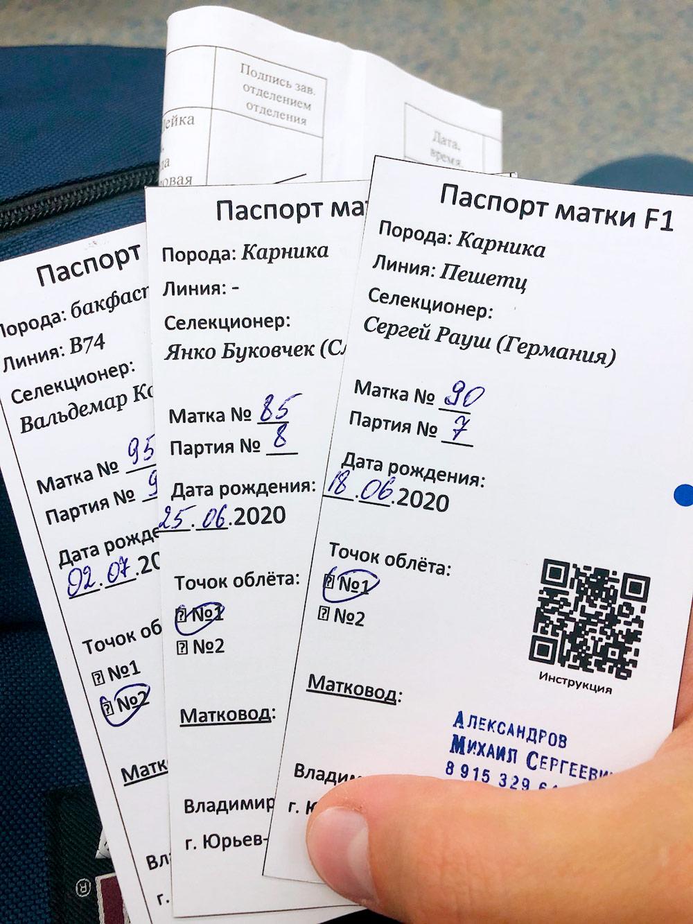А это их паспорта