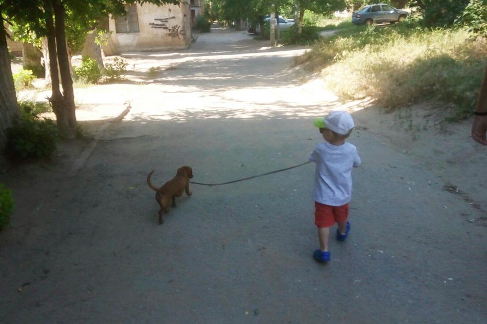 Типичная прогулка с ребенком