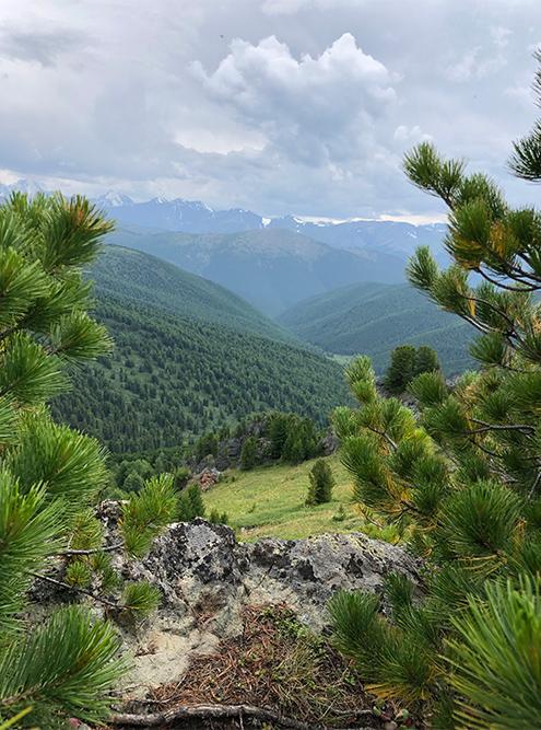 Мне до сих пор снятся виды Алтайских гор