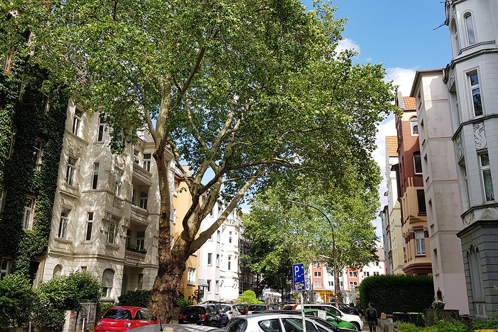 Типичная улочка в центре Дортмунда — красивые дома, построенные в прошлом веке в разнообразных архитектурных стилях, и очень много машин на тротуарах, так как места дляпарковки в центре катастрофически мало