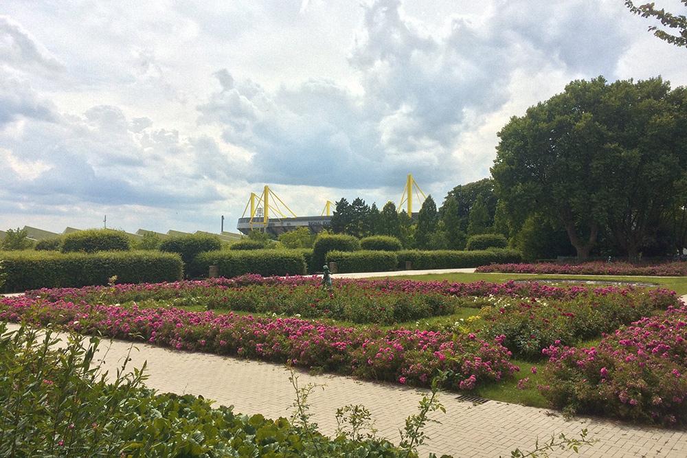 На заднем плане стадион футбольного клуба «Боруссия Дортмунд» — один из лучших и самый большой стадион Германии, вмещает 81 359 человек