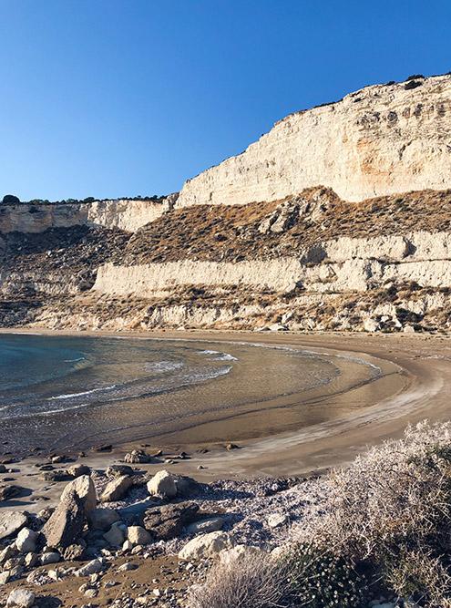 В этом месте пляжа мы нашли сотни ракушек