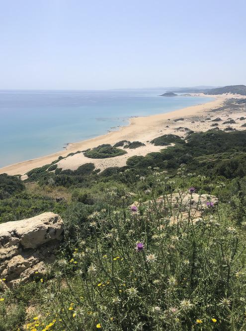 Вид на Золотой пляж со смотровой площадки
